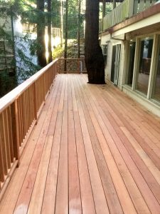 Redwood deck with tree growing right through it.